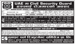 civil security
